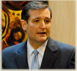 US Senatorial Candidate Ted Cruz, TX